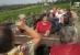 Weinverkostung am Geiseltalsee