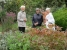 Schwatz im Kräutergarten