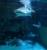 Zella-Mahlis Aquarium )
