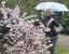 im Landschaftspark in Tannenfeld