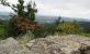 Gute Aussicht vom Waldstein